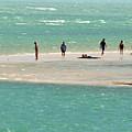 Sea Life Salt Life Key West Style  by Davids Digits