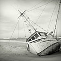 Sea Lion II - On The Beach by HW Kateley