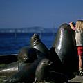Sea Lion Sculpture  by Jim Corwin