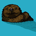 Sea Otter - Full Color by Karl Addison