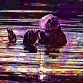 Sea Otter Swimming Floating Water  by PixBreak Art