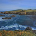 Sea Ranch In Spring by Ron Snyder