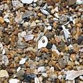 Sea Rocks by Marcie Daniels