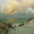 Sea Scape by Deborah Gallaway