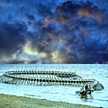 Sea Serpent by Dominic Piperata