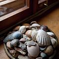 Sea Shells And Stones On Windowsill by Arletta Cwalina