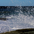 Sea Spray by Susan Vineyard