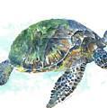Sea Turtle #20 by Claudia Hafner