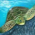 Sea Turtle by Caryn Morris