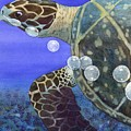 Sea Turtle by Catherine G McElroy