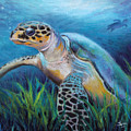 Sea Turtle Cove by Susan Jenkins