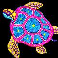 Sea Turtle by Nick Gustafson