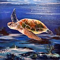 Sea Turtle by Stephen Broussard