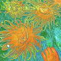 Sea Urchin 10 by Chris Taggart