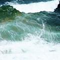 Sea Veins by Raquel Daniell