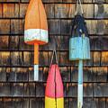 Sea Worn Buoys by John Vose