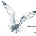 Seagull - Landing by Frederic Kohli