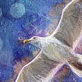 Seagull Against Blue Abstract by Peggy Collins