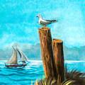 Seagull At Port Entrance by Nadine Johnston