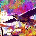 Seagull Birds Flight Wings Freedom  by PixBreak Art