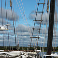 Seagull Flying Past Rigging And Ropes Of Sailing Vessel On Stomy Day With Shore And Cloudy Sky In Ba by Susan Vineyard