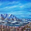 Seagull Seascape V by Tony Rodriguez