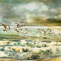Seagulls At Sea by Anne Weirich