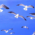 Seagulls Overhead by Anne Marie Brown