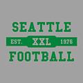 Seahawks Retro Shirt by Joe Hamilton