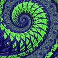 Seahawks Spiral by Becky Herrera