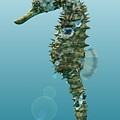 Seahorse 3d Render by Nathan Ryan