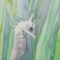 Seahorse by Alice Singer