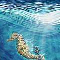 Seahorse Blues by Rafael Medina