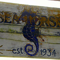 Seahorse Est. 1934 by David Lee Thompson
