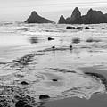 Seal Rock 0169 by Bob Neiman