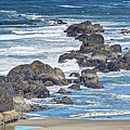 Seal Rock Seascape by Marv Vandehey