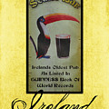 Seans Bar Guinness Pub Sign Athlone Ireland by Teresa Mucha