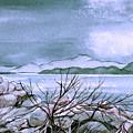 Seascape by Brenda Owen