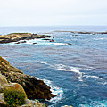 Seascape From Point Lobos State Reserve Near Monterey-california  by Ruth Hager