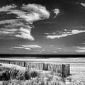 Seascape In Black And White by Carolyn Derstine