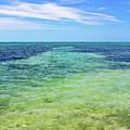 Seascape - The Colors Of Key West by Bob Slitzan