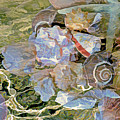 Seashell Melange 3 by Lynda Lehmann