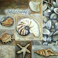 Seashells by Chris Hobel