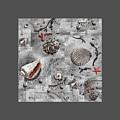 Seashells Collage Of Any Color by Irina Sztukowski
