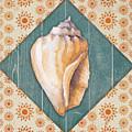 Seashells-jp3620 by Jean Plout