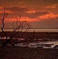 Seashore At Dawn by Geoff Crego