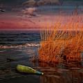 Seaside Bottle At Sunset by Reinhold Silbermann