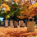 Seaside Cemetery by Terry Davis