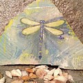Seaside Dragonfly by Paula Cox