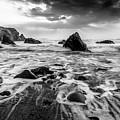 Seaside B/w  by Michael Damiani